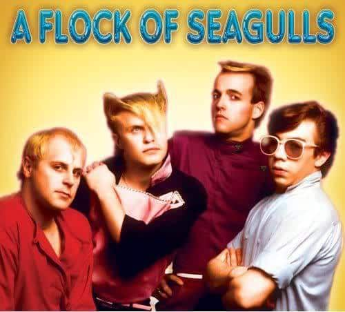Image of A Flock of Seagulls.