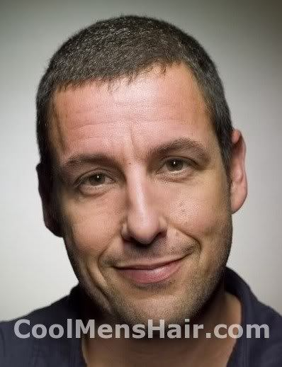 Picture of Adam Sandler short hairstyle.