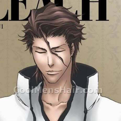 Image of Aizen Sousuke hairstyle.