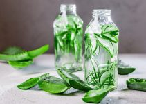 Aloe Vera benefits for hair