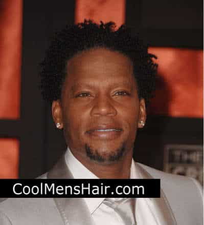 Picture of D. L. Hughley afro twist hair.