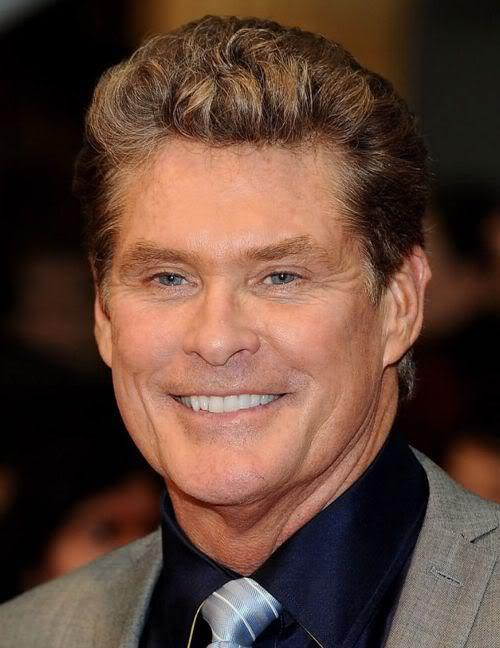 Image of David Hasselhoff hairstyle.