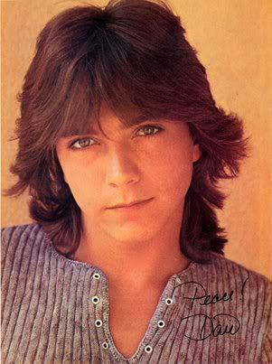 David Cassidy shag haircut