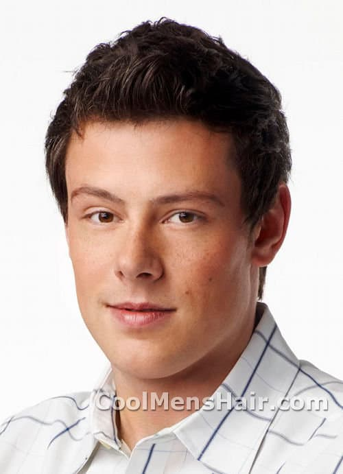 Picture of Finn Hudson hairstyle.