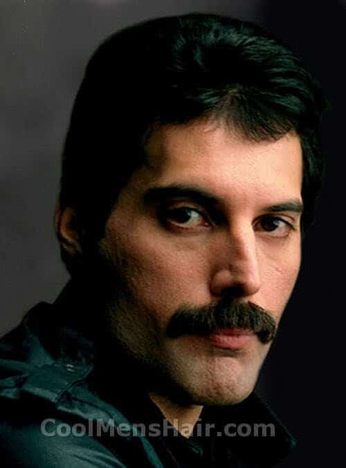 Photo of Freddie Mercury mustache.