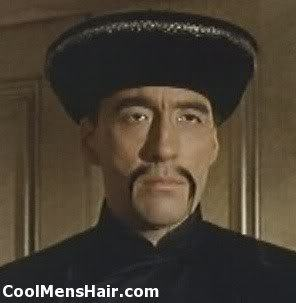 Photo of Fu Manchu mustache.