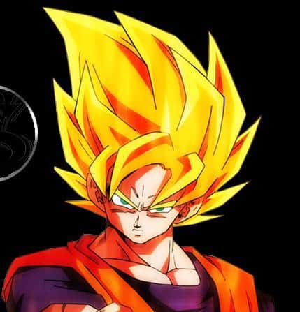 Picture of Goku Super Saiyan hairstyle.