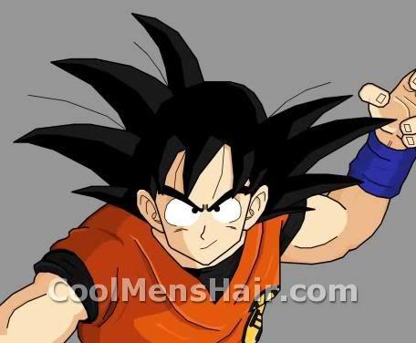 Photo of Goku hairstyle.