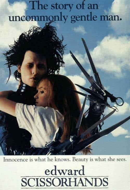 Picture of Edward Scissorhands hairstyle.