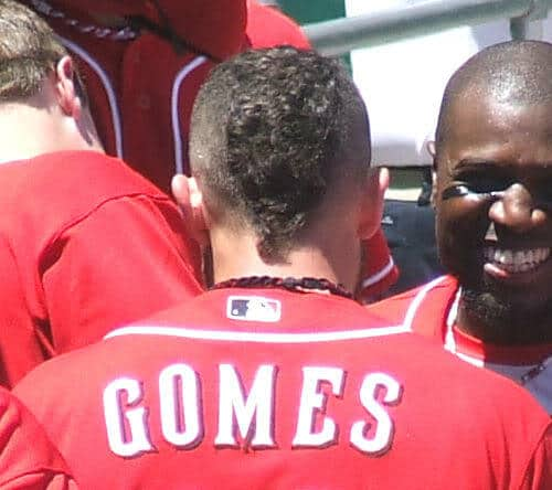 Image of Jonny Gomes mohawk hairstyle the back view.