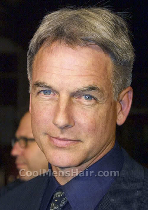 Picture of Mark Harmon hairstyle.