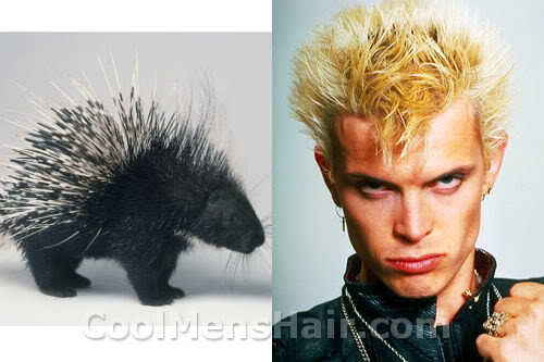 Photo of porcupine hairstyle.