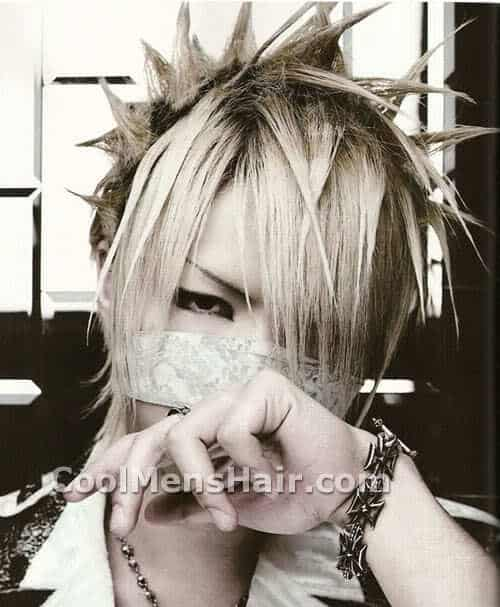 Picture of Reita hairstyle.
