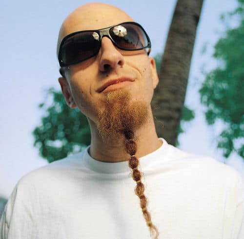 Photo of Shavo Odadjian beard style.