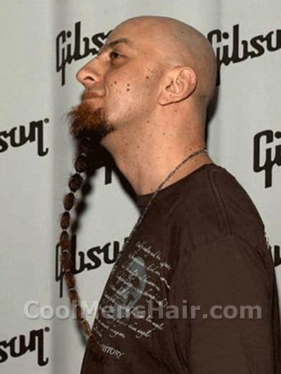 Photo of Shavo Odadjian beard.