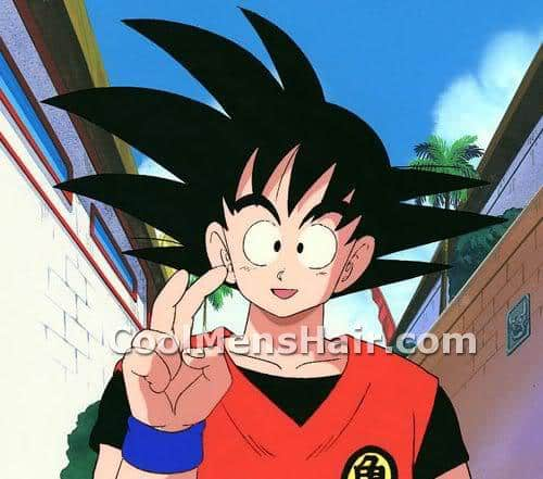 Photo of Son Goku black liberty spikes hair.