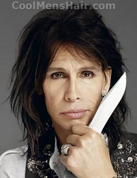 Image of Steven Tyler hairstyle.