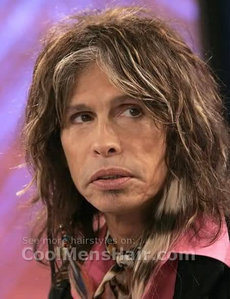 Steven Tyler hairstyle with gray streaks photo.