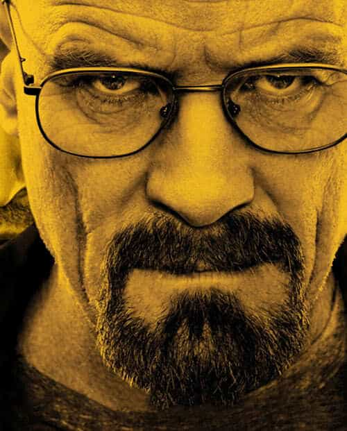 Picture of Walter White facial hair.