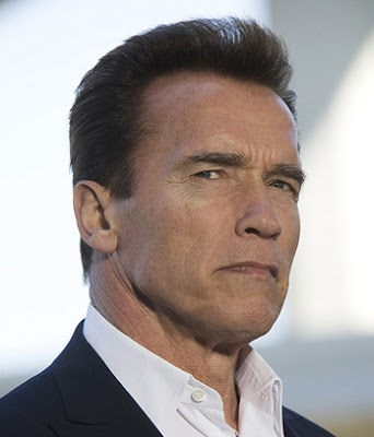 Arnold schwarzenegger flat top hairstyle cool mens hair solutioingenieria Images