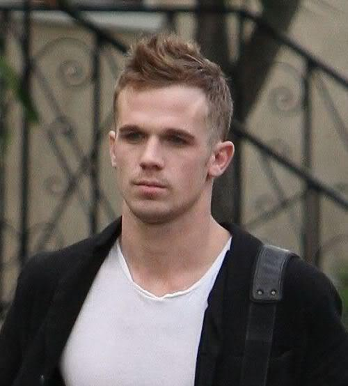 Image of Cam Gigandet faux hawk hairstyle.
