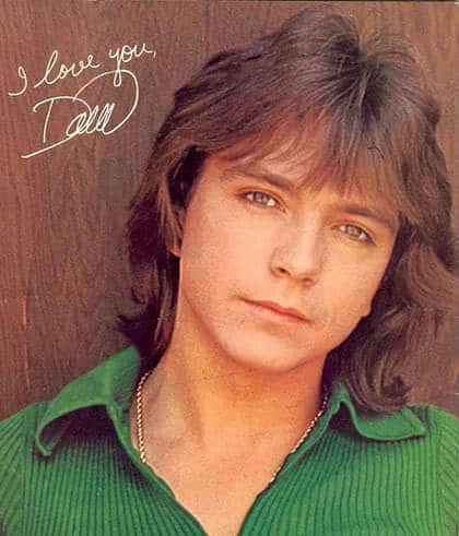 David Cassidy Shaggy Hairstyle