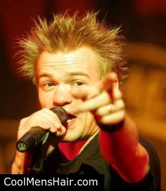 Cool mens punk hairstyle from Deryck Whibley.