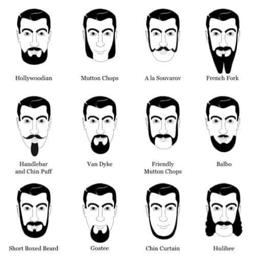 different beard types