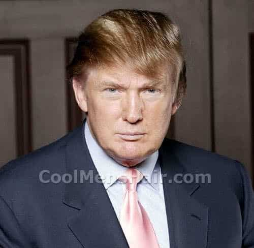 Photo of Donald Trump hair.