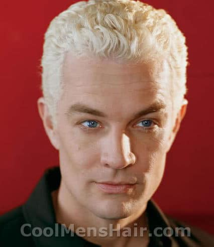 Photo of James Marsters 'Spike' hairstyle.