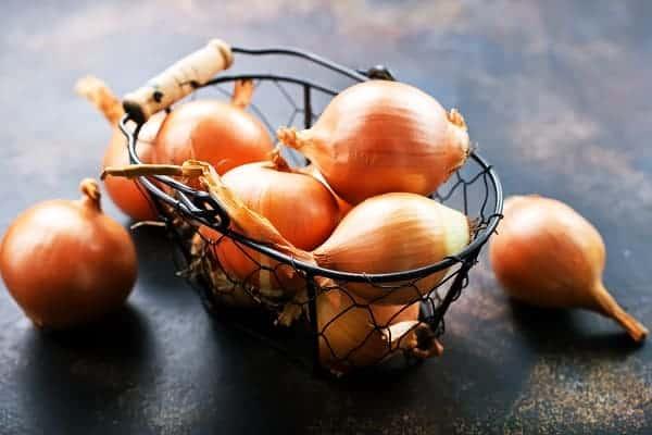 onion for hair