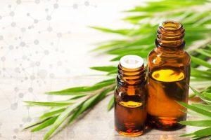 tree tea oil shampoo advantages