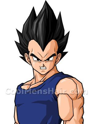 Picture of Vegeta black spiky hairstyle.