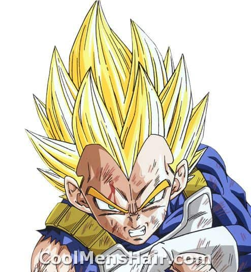 Image of Vegeta hairstyle.